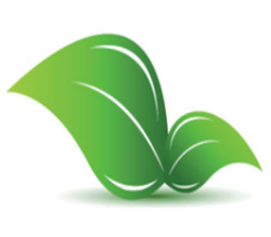 Россельхознадзор обсудил с Управлением по защите растений Министерства сельского, лесного и водного хозяйства Республики Сербия вопросы поставок плодоовощной продукции в Россию