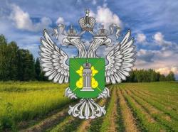 Итоги деятельности Россельхознадзора в сфере государственного земельного надзора в 2018 году